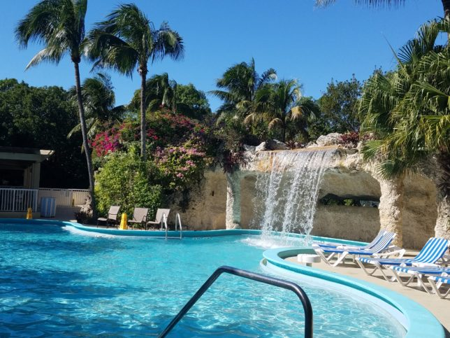 hilton-pool-key-largo